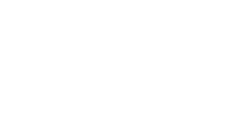 Power Washing Professionals logo footer white