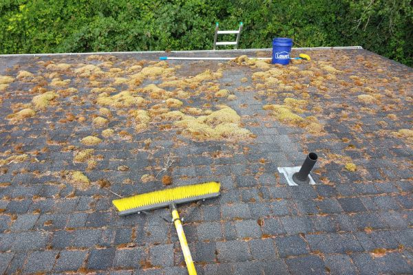 roof cleaning vancouver wa 15